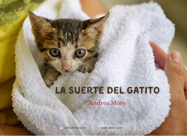 La suerte del gatito, por Andrea More