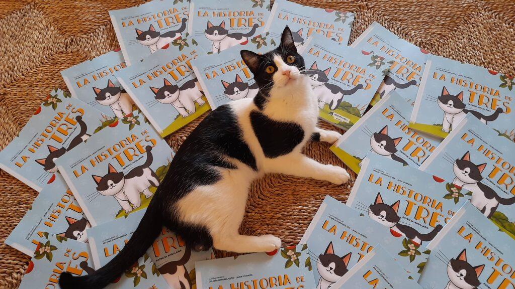 patricia ahullana gato